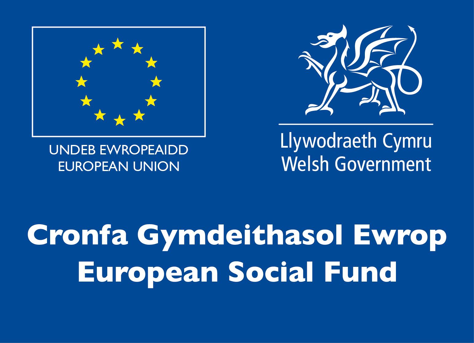 European Social Fund (2015)