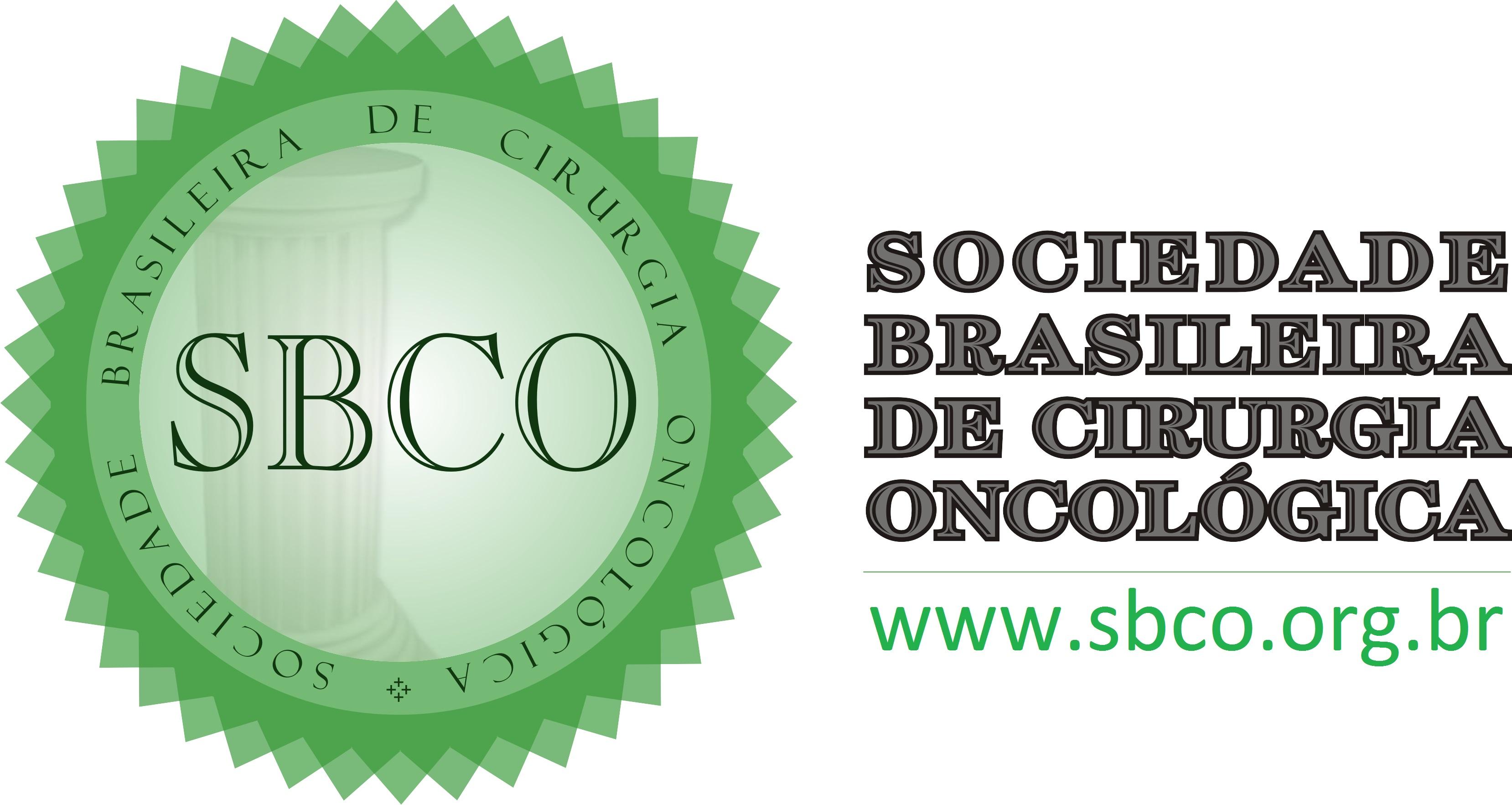 Logo BSSO