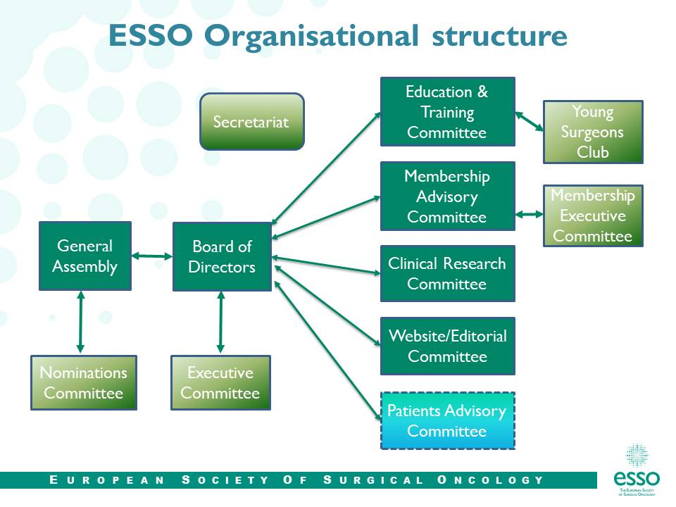 Organisational structure esso organisational structure thecheapjerseys Choice Image