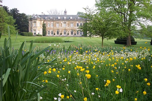 Hartwell House with buttercups