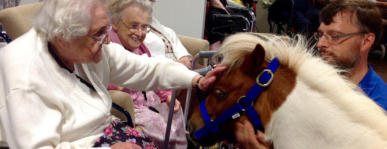 Pony Princess visits at Care Home - July 2018