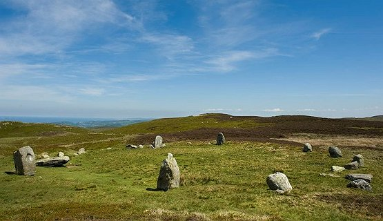 The Druids' Circle - The Druids' Circle