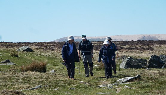 walking the Preseli hills