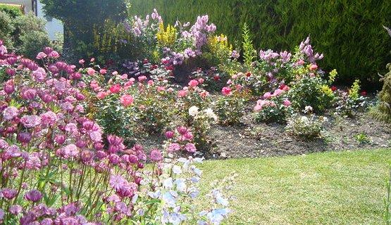 Vale of Clwyd Gardens - Cottage Garden