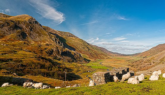 A Taste of Snowdonia (half day tour)